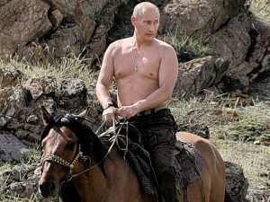 Putin picks up heavy things and puts them down. And he wants you to know that as a result, he's too sexy for his shirt.