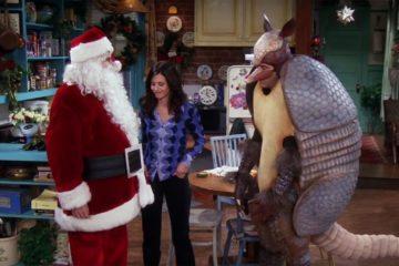 holiday-armadillo